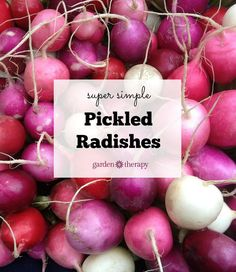 Re-introduce yourself to the radish: go grab a bunch of and pickle them. This recipe is surprisingly addictive and easy to make.
