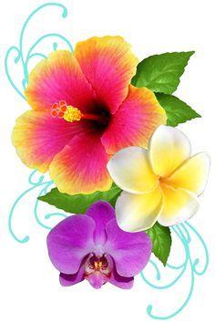 Hibiscus and plumeria tattoo - Hot Tattoo Hawaiian Flowers, Hibiscus Flowers, Exotic Flowers, Tropical Flowers, Lilies Flowers, Flowers Garden, Purple Flowers, Unique Tattoos, Beautiful Tattoos