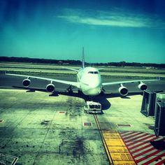 Thai Airways B747 - FCO