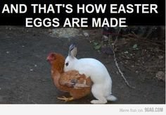 I can't help myself from pinning this...it will make me laugh every year when I check out my Easter board
