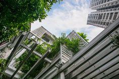 Growing Green Office,© Vu Xuan Son