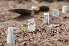 The most profitable plants in your vegetable garden....What does it 'pay' to plant, or not...