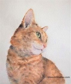 Watercolor cat painting by animal artist, Teresa Silvestri.  Original sold, but prints & cards available.