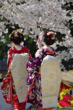 Sakura -------- I think the Japanese traditional apparel is the most stylish fashion in the world :))) Kabuki Costume, The Last Samurai, Japanese Lifestyle, Garden Of Earthly Delights, Japanese Kimono, Japanese Style, Turning Japanese, Hanabi, Science For Kids