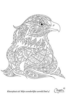 Find This Pin And More On Coloring Animals By Ame Martin
