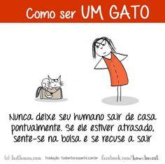 Atenção: bom humor é fundamental para que você aprenda todos os passos de como ser um gato!