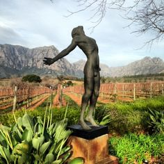 From the road in South Africa: Delaire Graff and 96 Winery Road South Africa, Garden Sculpture, Wine, Outdoor Decor