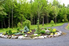 Gravel Driveway Landscaping Ideas | line driveway? Description from pinterest.com. I searched for this on bing.com/images