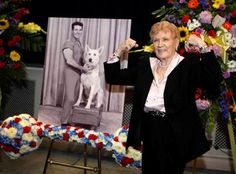 Thinking of sending flowers for a funeral or celebration of life? Why not challenge the florest to create a unique tribute like this bar bell floral arrangement used at Jack LaLanne's service. #funeral #flowerarrangements #floral