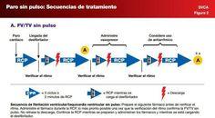 FV/TV sin pulso. Secuencia de tratamiento de PCR. AHA 2010