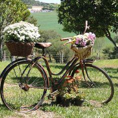 O que fazer com aquela bicicleta velha? Que tal um arranjo para o jardim?