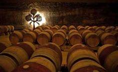 Roda Winery, La Rioja - Spain To learn more about #Bilbao   #Rioja, click here: http://www.greatwinecapitals.com/capitals/bilbao-rioja
