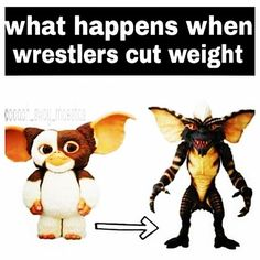 The one on the right is the start of cutting weight...not the final monster.