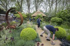 Chelsea Garden   Roger Platts   Gardenista