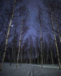 Al sinds Tiina Törmänen een klein meisje was, is ze gefascineerd door sneeuw. Destijds bouwde zij er kastelen mee, nu maakt ze er prachtige foto's van. Törmänen groeide op in het Finse Lapland en is daardoor al haar hele leven omgeven door prachtige natuur, bestaande uit meren en bossen. In de winter wordt het landschap …