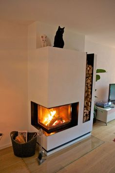 Modern Corner Wood Burning Fireplace With Firewood Storage On The Right Side, Contemporary Fireplace Design Ideas For Modest Homes: Furniture