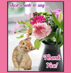 Say thank you with cute cat and beautiful flowers. Free online A Note To Say ecards on Thank You Thank You Gifs, Thank You Pictures, Thank You Images, Thank You Quotes, Thank You Cards, Appreciation Quotes Relationship, Appreciation Quotes For Him, Beautiful Flowers Pictures, Flower Pictures