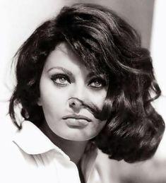 sophia loren, vintage, and actress image