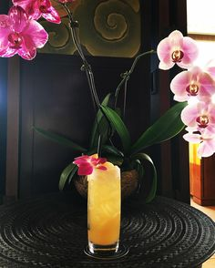 Trump Waikiki's famous Ilikea Mai Tai, the drink that took title of the world's best Mai Tai in 2011. An absolute must-try when in Honolulu.