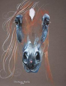 Resultado de imagen de sue flask, horses