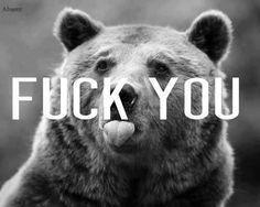 #fuck #you #loveit #bear