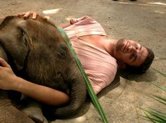 The best part of my Thailand trip - falling asleep with a baby elephant
