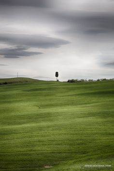 Tuscany, Italy in the heat of the Tuscan hills. #Tuscany #italy #fields #nature #Toscana #WallArt #Hills #Nature #Bliss #Abstract #landscape #Florence
