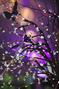 enchanted forest wedding theme | enchanted forest purple wedding Whimsical Washington Wedding by Abbey ...