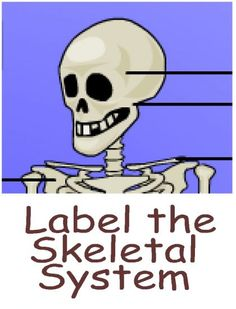 Skeletal System for Kids - Science Games and Videos
