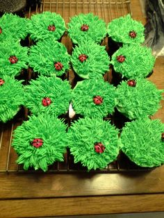 Ladybug in the grass cupcakes