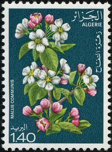 Stamp: Apple (Algeria) (Flowering trees) Mi:DZ 721,Sn:DZ 610,Yt:DZ 682