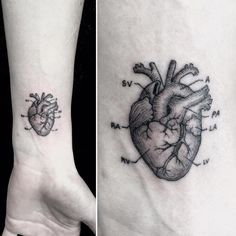 Black and Grey Anatomical Heart by Mr.K / Sanghyuk Ko M R.k_tats BlackandGrey he.Black and Grey Anatomical Heart by Mr.K / Sanghyuk Ko M R.k_tats BlackandGrey heart anatomy singleneedle micro mr.k sanghyukko Heart Anatomy Tattoo, Human Heart Tattoo, Brain Tattoo, Mini Tattoos, Body Art Tattoos, Small Tattoos, Grunge Tattoo, Future Tattoos, Tattoos For Guys