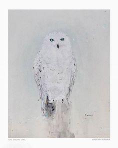 The Snowy Owl  acrylic on canvas
