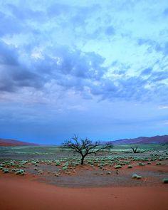 Dawn from Dune 45, Sossusvlei, Namibia.  Photo: Rob Kroenert, via Flickr