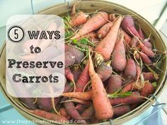 How to Preserve Carrots..  I know this seems like a no-brainer, but there are links to the how-to's of it all  :)