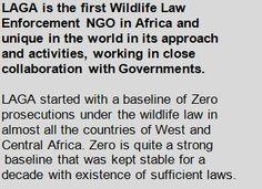 LAGA - The Last Great Ape Organization  Home
