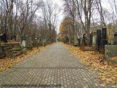 patrząc w jedną stronę: Cmentarz Żydowski