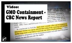 #GMO Containment - CBC News Report