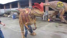 Halloween realistic dinosaur costume suit for sale DWE3324-15 ...