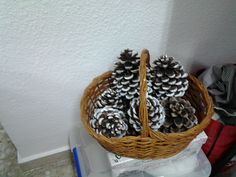 Cistell de pinyes