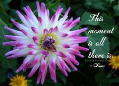 This moment is all there is.  - Rumi