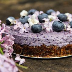 Blueberry Chia Cashew Cake With Dates & Coconut Cream