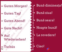 Guten Tag! Bună ziua! - Rumänisch Lernen Sprachkurs Words, Good Night, Language, Good Morning, Studying, Horse