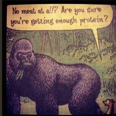 vegetarian humor | Vegetarian vs Meat Eater