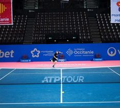 Andy Murray, Montpellier, Basketball Court, Sports, Hs Sports, Sport