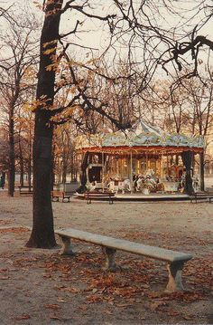 .A merry-go-round  in winter, but it looks like it will not go round ever again!