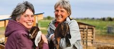 Tieton Farm & Creamery: Ruth and Lori Babcock own a 21-acre farm in the Upper Yakima Valley, and their small herds of Nubian goats and Katahdin and East Friesian sheep are tended with care by farmer Ruth (Lori is the cheese maker).