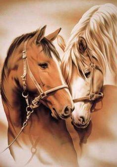 les chevaux c'est top!                                                                                                                                                                                 Plus                                                                                                                                                                                 Plus