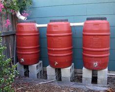 water barrels  pinned by www.ukgardening-directory.co.uk