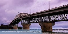 harbour bridge auckland photo - Google Search